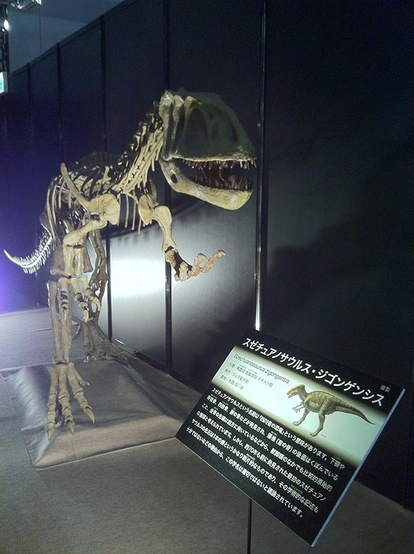 スゼチュアノサウルス・ジゴンゲンシス