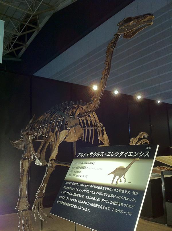 アルシャサウルス・エレシタイエンシス