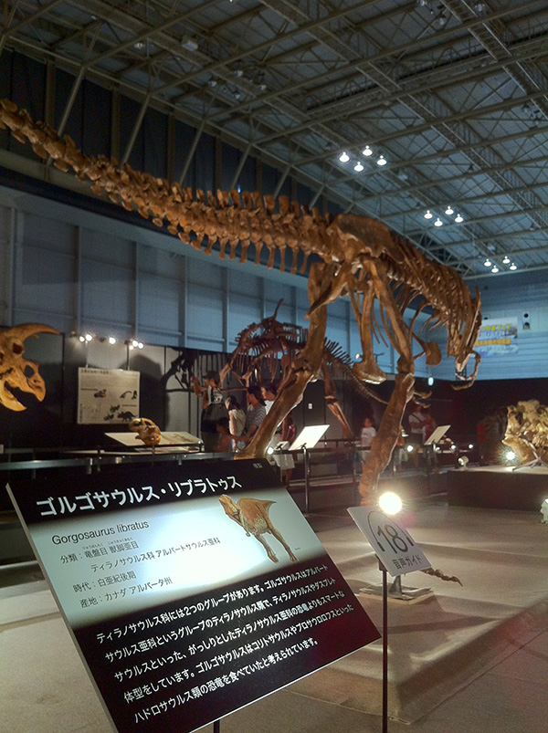 ゴルゴサウルス・リブラトゥス